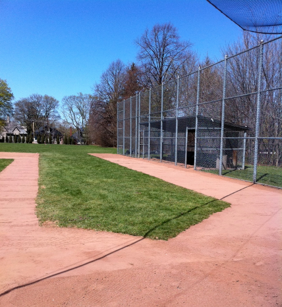 Ball Diamond Rejuvination