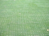 Dryject Application