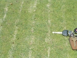 Dry Ject Application - Weston Golf Club