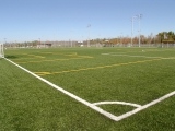 Synthetic Turf Infill Sand
